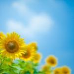 【彼氏がドン引き!?】夏のデート時のNGな紫外線対策7選