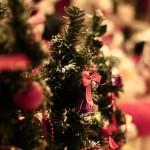 【24日or25日!?】カップルでクリスマスデートをするのはいつ!?